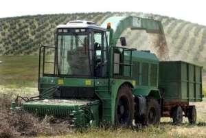 produccion_biomasa_energia_renovable_andalucia_españa